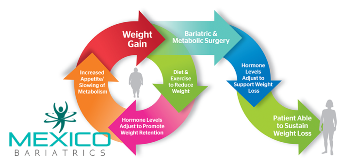 Once you have decided that having bariatric surgery is right for you, you will then need to select a facility and surgeon in Mexico.